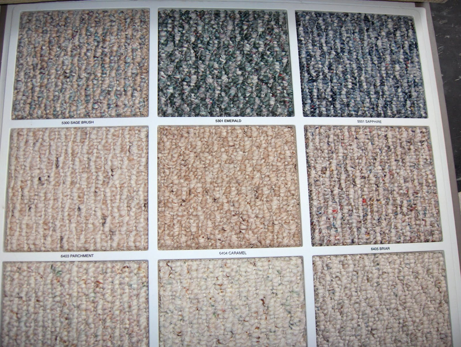 "Often tight- looped texture carpeting  has the flecked coloring called ""Berber"""