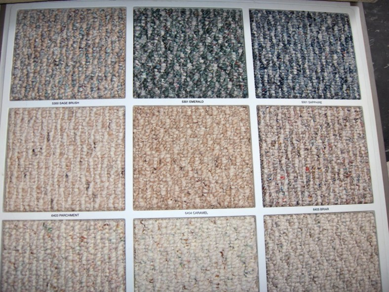 """Often tight- looped texture carpeting  has the flecked coloring called """"Berber"""""""